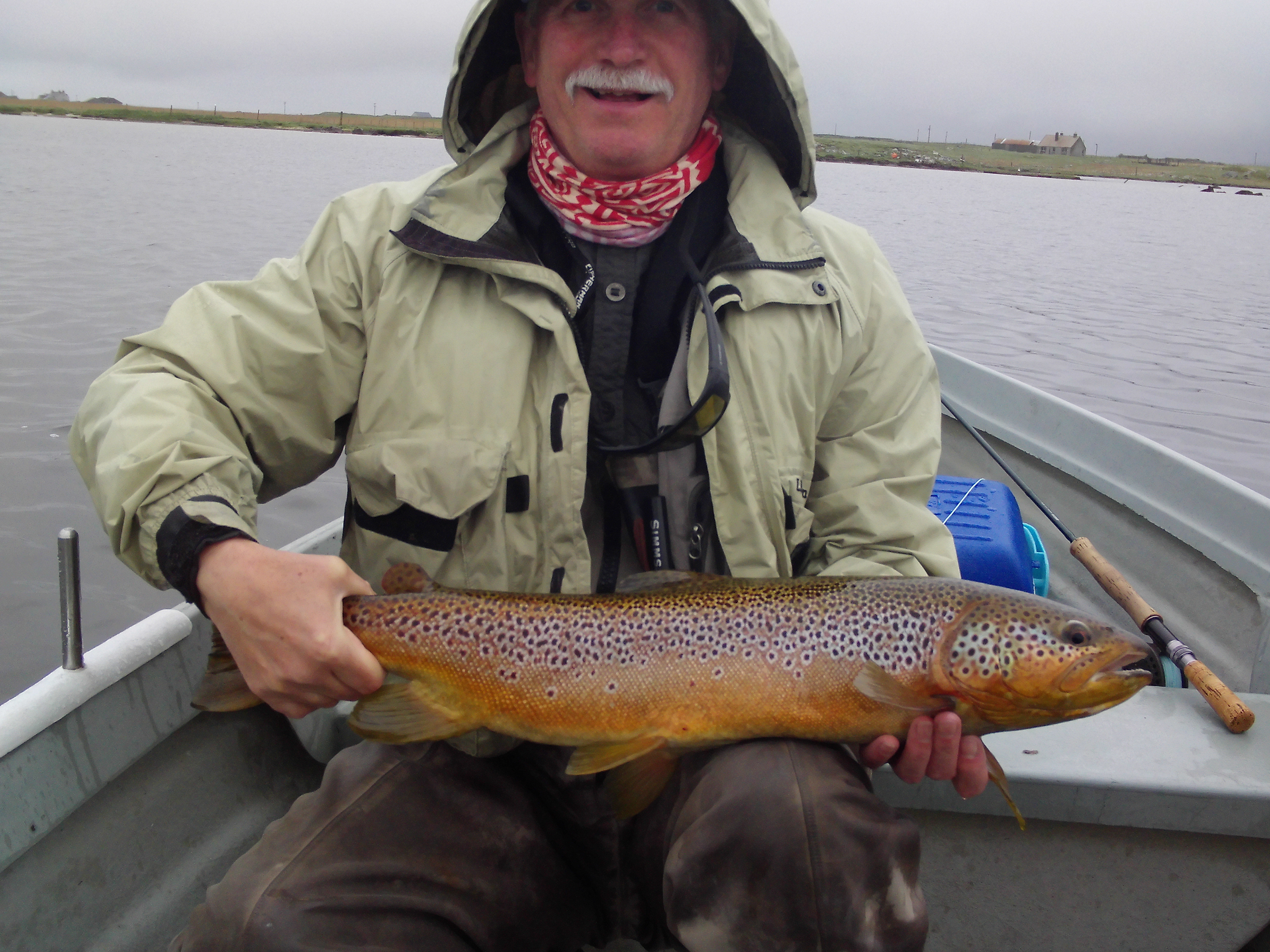 5 75lb brownie West Orray S Uist 21 May16